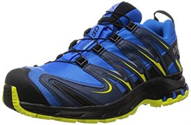 SALOMON WINGS FLYTE 2 GTX M